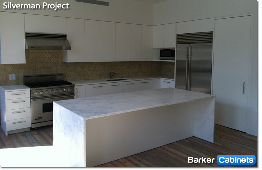 Silverman Project